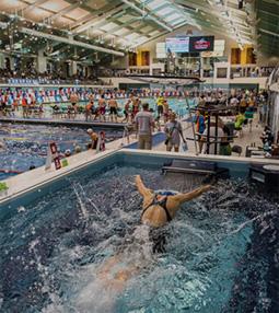 Exercise Pool Swim Spa Endless Pools Exercise Pools